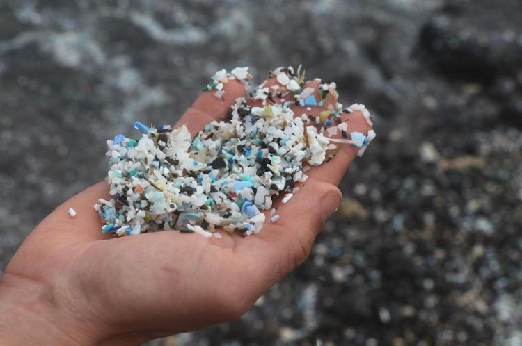 1560734449795-Microplastic-in-the-waters-off-Kamilo-Beach-Hawaii-cErica-Cirino.jpeg