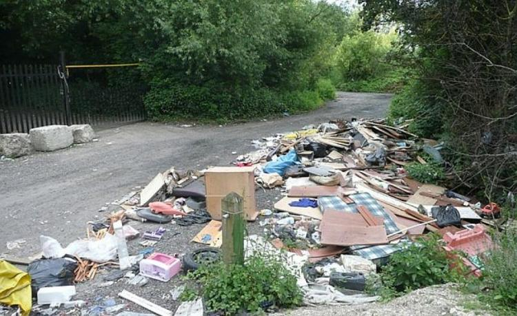 cottage_lane_flytipping_-_geograph.org_.uk_-_847636.jpg
